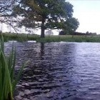 Grange Fishery