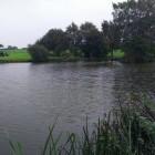 Dovehouse Pool