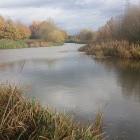 Dunham Fisheries
