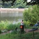 Lymm Dam