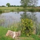 Merrydale Pool