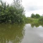 Thornhills Fishery