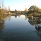 Home Farm Fishery